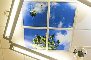 plafond behandelkamer